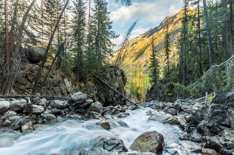 Устье ручья Голубого